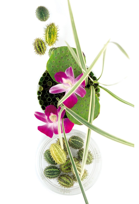 Yi-Spa Blumen